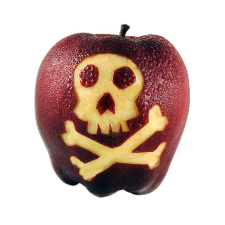 """MacWorks cited in """"Apple Launches Bug Bounty Program, A Security 'Mea Culpa'"""" – CRN News"""